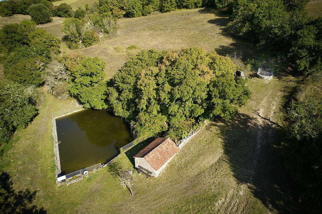 UIn ensemble dédié à l'eau. Invisible au milieu des arbres la source et le lac, un réservoir et un puit