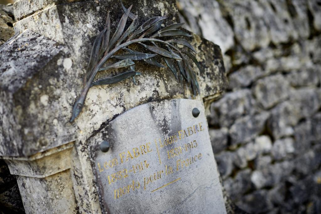Louis et Léon tous deux dispensés de service pour être les fils ainés d'une veuve sont appelés en 14 et décèdent de blessures de guerre en 1915 pour Louis et en 1914 pour Léon.